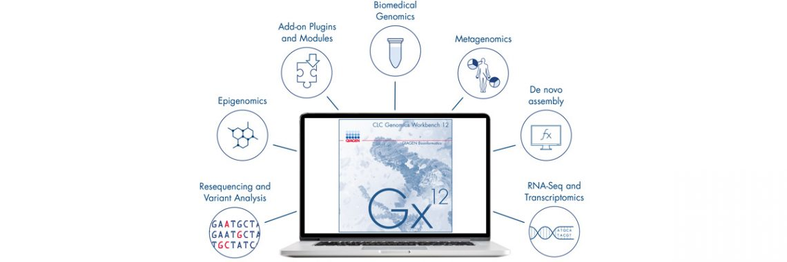 A genomics workbench for everyone